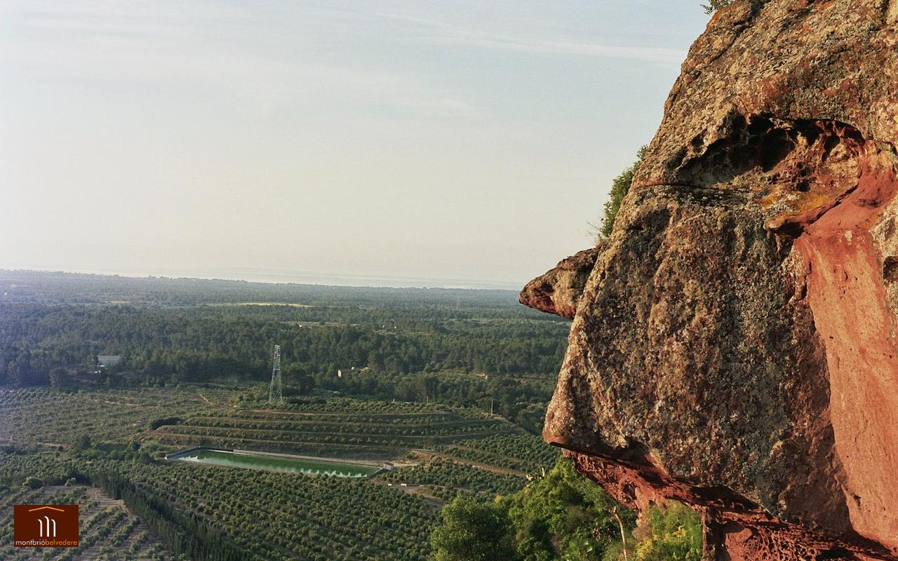 Mare de Déu de la Roca de Mont-roig